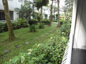 Вид на сад