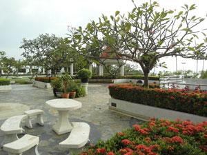 Park-like Area