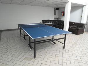 Paradise Table de Ping Pong