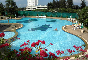 Большой общий бассейн