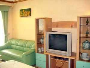Canapé et Télévision
