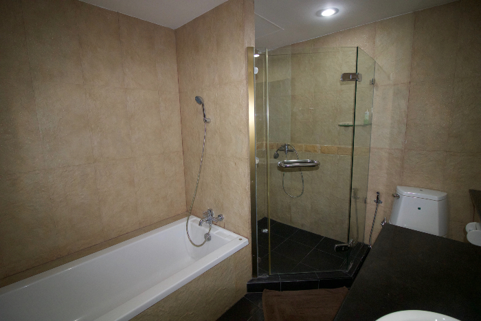 Bathroom & Walk-in Shower